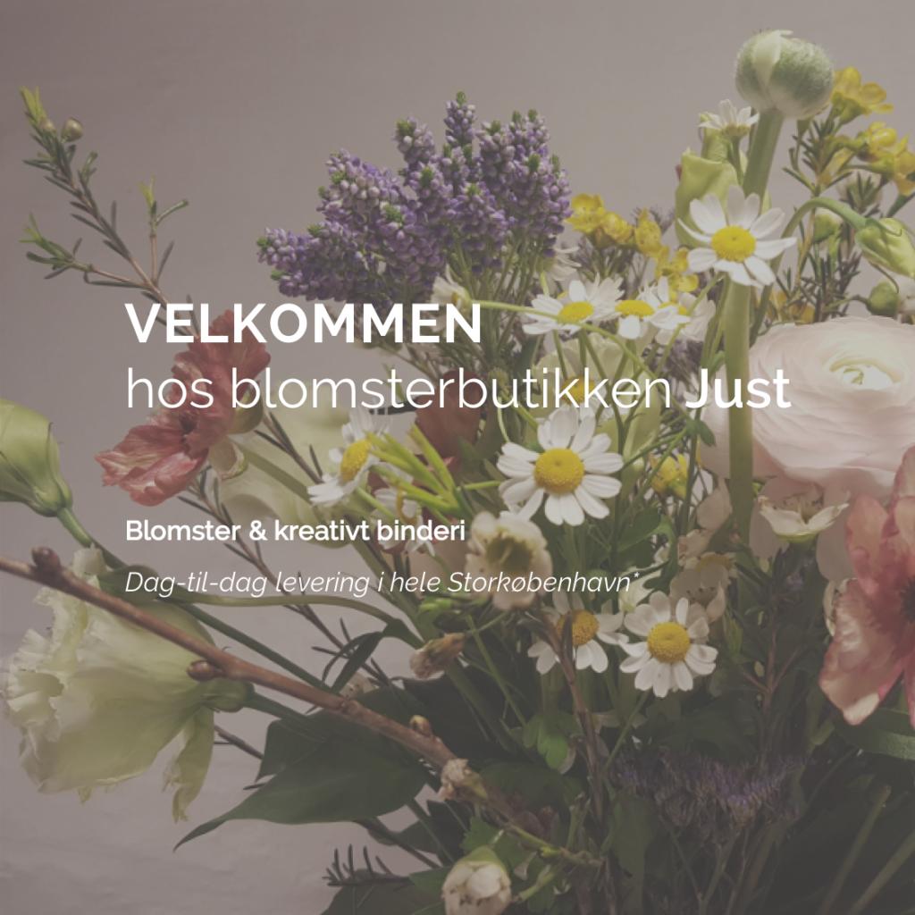 Blomsterbutikken_Just_Forside1